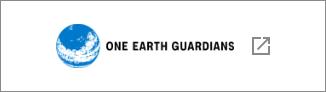 東京大学One Earth Guardians(OEGs)育成プログラム